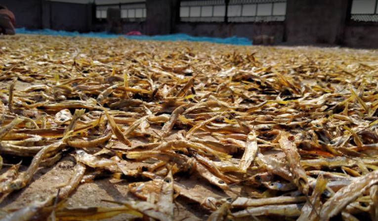 Asia's largest Dry Fish Market - Morigaon Image