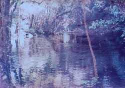 Dzudu Lake - Phek Image