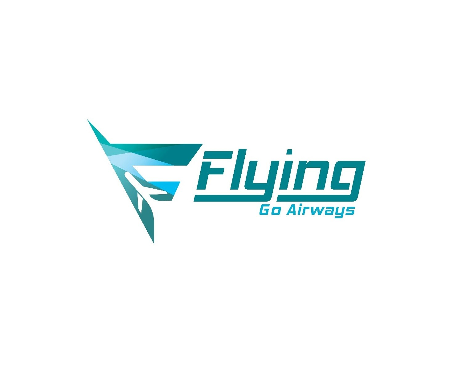 Flying Go Airways Travels Private Limited - Delhi Image