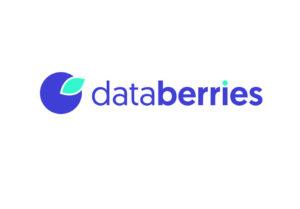 DataBerries Image