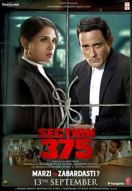 Section 375 Image