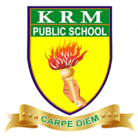 KRM Public School - Perambur - Chennai Image