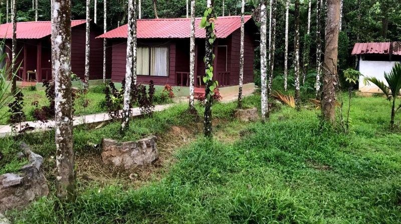 La Flora Prakruth Resort - Coorg Image
