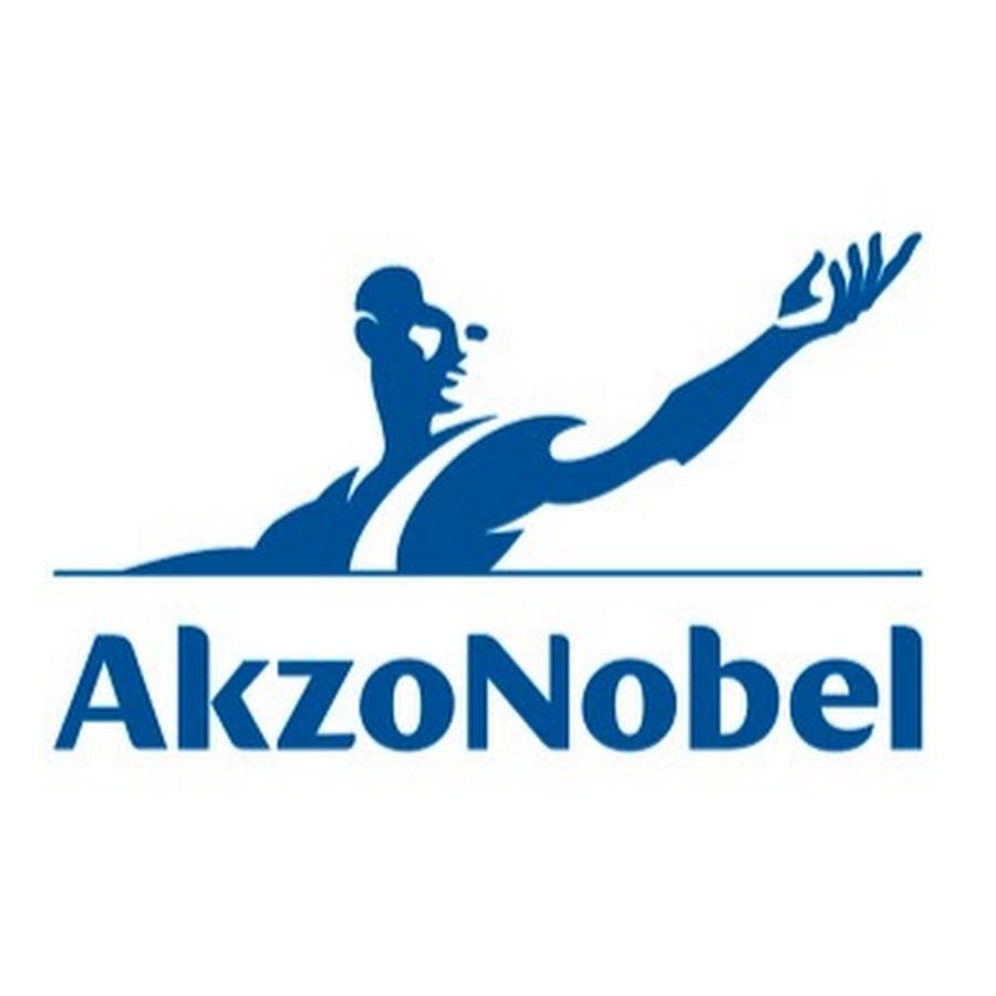 Akzo Nobel Paints Image