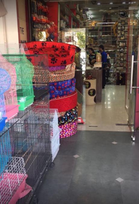Anils 22 The Pet Shop - Sector 22c Image