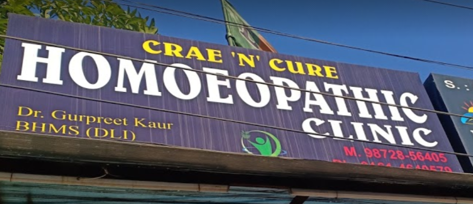 Suraj Homoeo Pharmacy - Ghumar Mandi Image