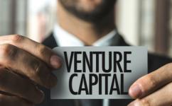 Are Venture Capitalists Dumb