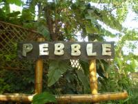 Pebble - Sadashiva Nagar - Bangalore