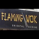 Flaming Wok - Chittaranjan Park - Delhi
