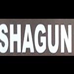 Shagun - Vijay Nagar - Delhi NCR
