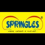 Springles Pre School - Patiala
