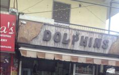 Dolphins - Vikaspuri - Delhi NCR