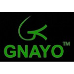 Gnayo Sanjeevani Water Filter