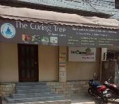 Curing Tree Spa - Padmarao Nagar - Hyderabad