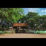 Anand Resort - Virar - Palghar