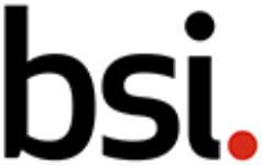 BSI Group - Bangalore