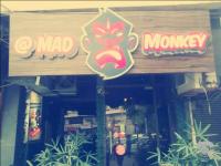 Mad Monkey - Vijay Nagar - Delhi NCR