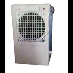 Payton 10 Saffire Desert Cooler
