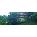 Brahmaputra Jungle Resort - Tapesia - Guwahati