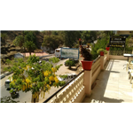 Palm Residency - Mount Abu