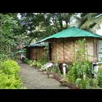 Palm Grove Eco Resort - Prothrapur - Port Blair