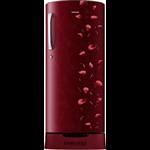 Samsung RR21J2835RZ-TL 212 L Single Door Refrigerator