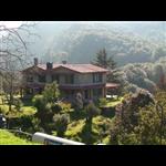 Nandadevi Estate - Ayarpani - Binsar