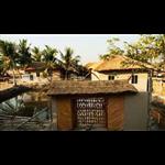 Solitary Nook - Pakhiralaya - Gosaba