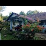 Hirvate Estate - Kesagodu - Hassan