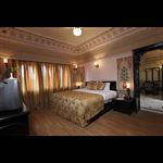 Hotel Bharatpur Ashok - Bharatpur