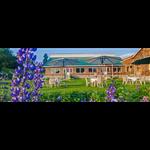 Nedous Hotel - Ski Institute Road - Gulmarg