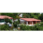 Green Hill Resort and Camp - Mukteshwar - Nainital