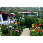 Mountain Trail Resort - Mukteshwar - Nainital