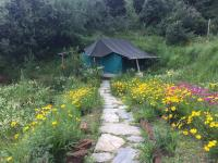 Wildrift Adventures Camp Purple - Mukteshwar - Nainital