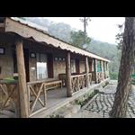 Nature Stay - Dochi Road - Kasauli
