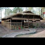 Sanawar Nature Camp - Dharampur - Kasauli