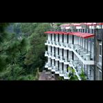 Wood Creek Resort & Spa - Sanawar - Kasauli