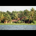 The Lily Pad Hotel - Pallichara Church Road - Kumarakom