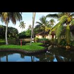 Whispering Palms Resort - Kumarakom