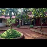 Vandashree Stay - Dhuriwada - Malvan