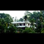 Sunrise Homestay - Wayanad - Kalpetta