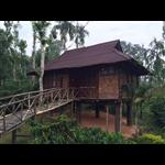 The Treasure Trove Home Stay - Meenangadi - Kalpetta