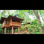 Trekking Trails Eco Lodge - Shanti Nagar - Kalpetta