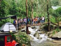 Wayanad Jungle Camp - Kalpetta