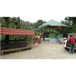 Wayanad Neverland Homestay - Narikundu - Kalpetta