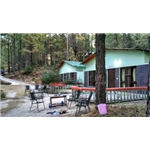 Jungle Resort Retreat - Dhora - Lansdowne