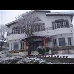 Merigold Cottage - Majkhali - Ranikhet