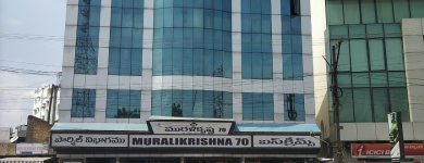 Murali Krishna Hotel - Ramesh Reddy Nagar - Nellore