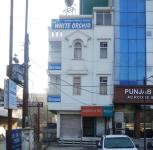 Hotel White Orchid - Awas Vikas - Rudrapur