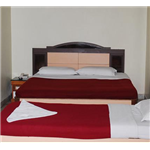 Vinayak Hotel - Central School Road - Pachmarhi
